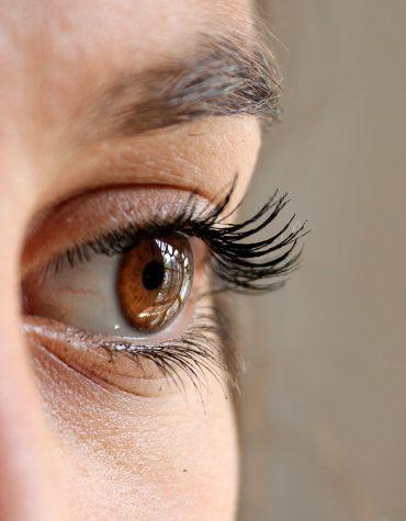 Iris scan - brown eye
